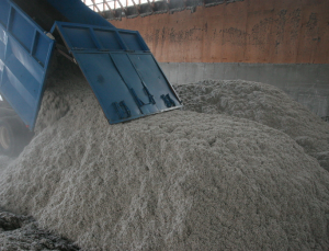 Storing Cotton Seed (Cotton Inc)